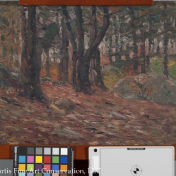 Charles Salis Kaelin (1858-1929), Fall Woodland Scene, ca. 1920, Oil painting on canvas board
