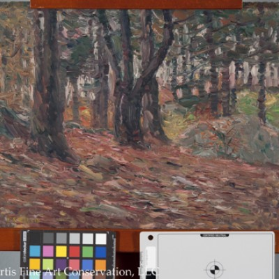 Charles Salis Kaelin (1858-1929), Fall Woodland Scene, ca. 1920, Oil painting on canvas board
