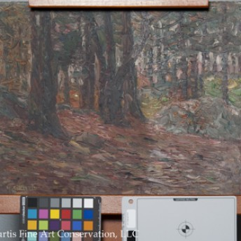 Charles Salis Kaelin (1858-1929), Fall Woodland Scene, ca. 1920, Oil painting on canvas board.  This image shows the unvarnished picture partially grime cleaned using specular light, which illustrates the paint surface's dramatic change in gloss as a result of grime removal.